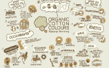 organic-cotton-colors-2-768x543